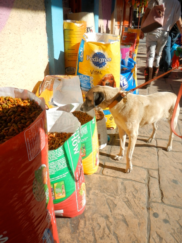 Lucy's dream come true. Dog food sold by the scoop. La Paz, Mexico