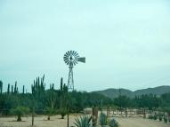 Road to La Ventana