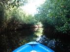 Panga ride through Rio Tovara