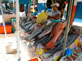 Fish monger in San Blas