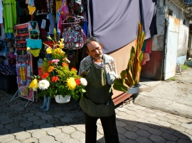 Florist in San Blas
