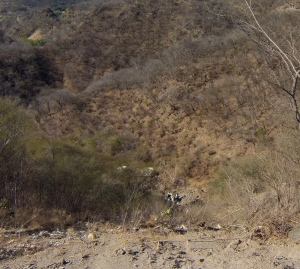 Oaxaca accident