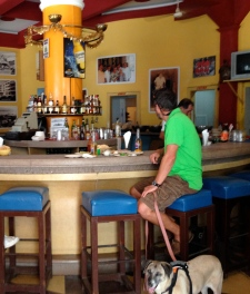 Bar Social