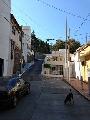 Manzanillo side street