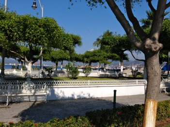 Historic downtown Manzanillo garden