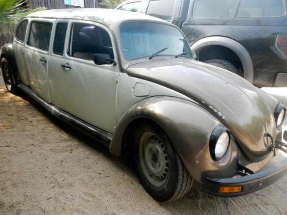 VW Centipede