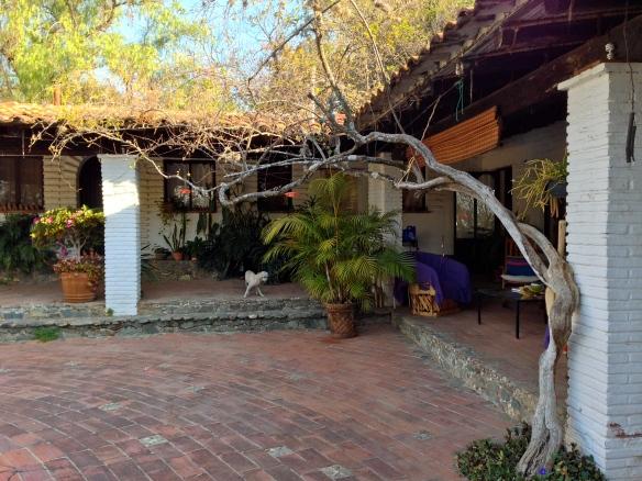 Casa Raab courtyard