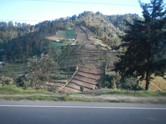 Guatemalan countryside