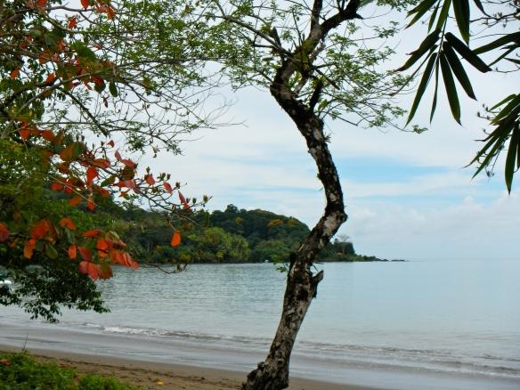Drake's Bay, Costa Rica