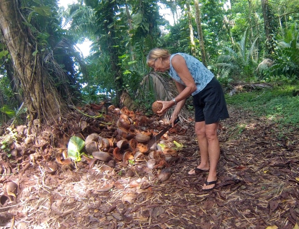 Trudy, coconut opening expert