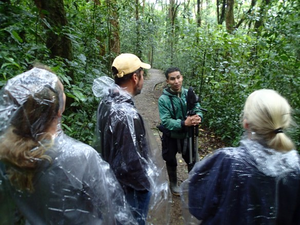 Javier leading us through the Cloud Forest.  And yes we are styling in those rain jackets