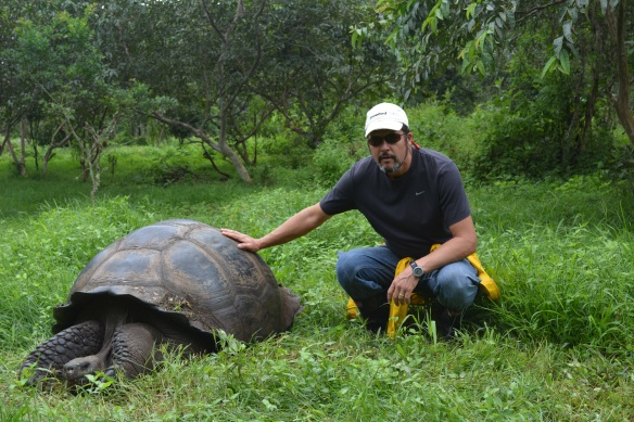 Galapagos is the Spanish word for tortoise