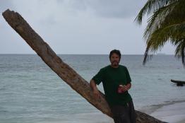 Palm Pete