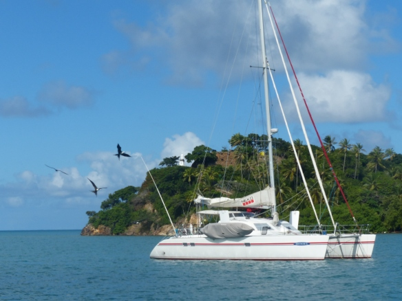 Neko anchored in Providencia