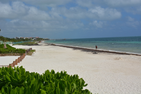 Lovely beaches of Puerto Morelos, Mexico