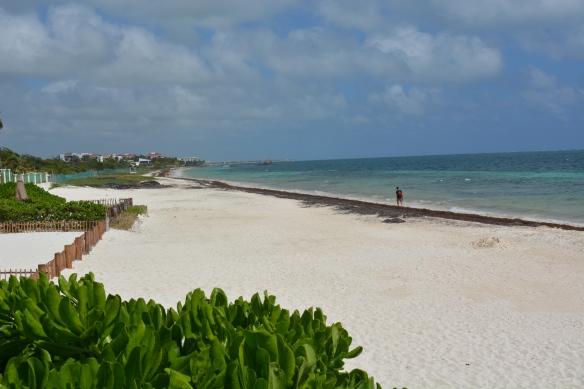 Lovely beaches of Puerto Morelos, Mexico