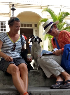Hemingway House dog...what a smile.