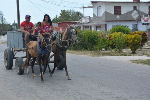 Family on horse and cart