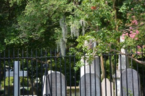 Learned the difference between a cemetery and a graveyard. Graveyards have to be on church grounds.