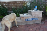 Lucy enjoying a drink at the Bark Bar.