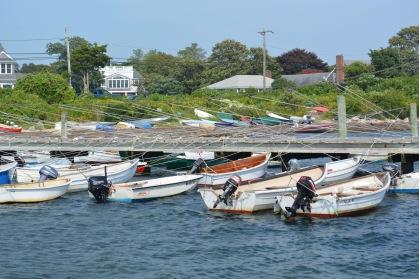 Elaborate dinghy dock system