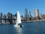 You know Neko is in all the hip places. Sailing under the Brooklyn Bridge.