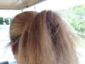 yep, lizard hitching a ride in Mary's hair