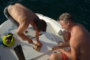 Pete & Mike easily dive for conchs, now they just need to open it.