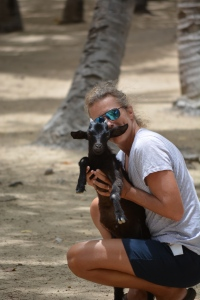 This baby goat was just roaming the beach.
