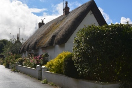 thatch roofs abound
