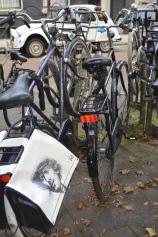 Bikes everywhere in Amsterdam